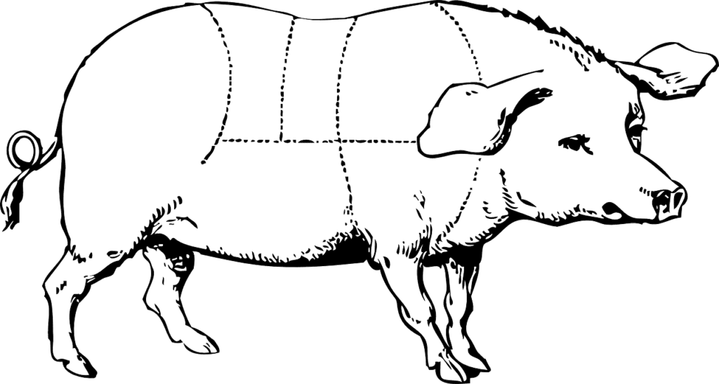 What Cuts To Get When Butchering A Pig 9 Best And Classic Cuts Of Meat My Backyard Life
