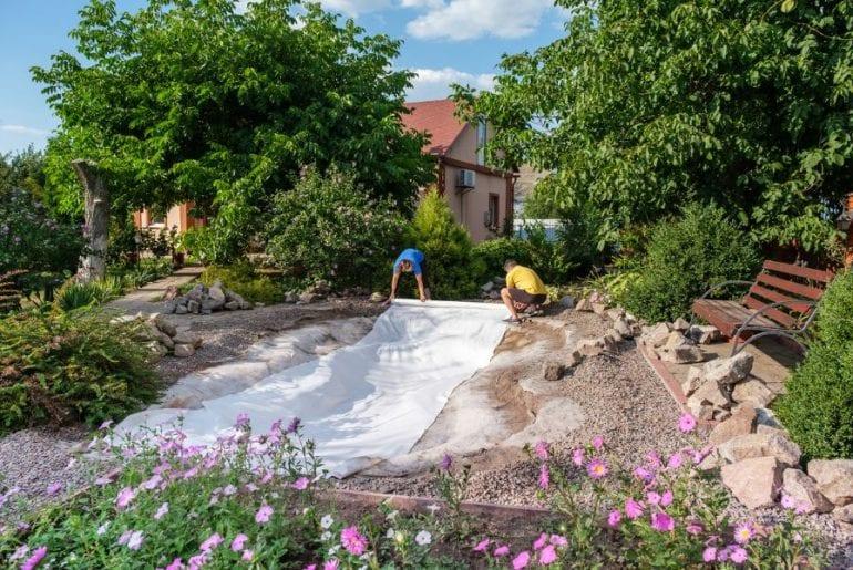 New Backyard Pond