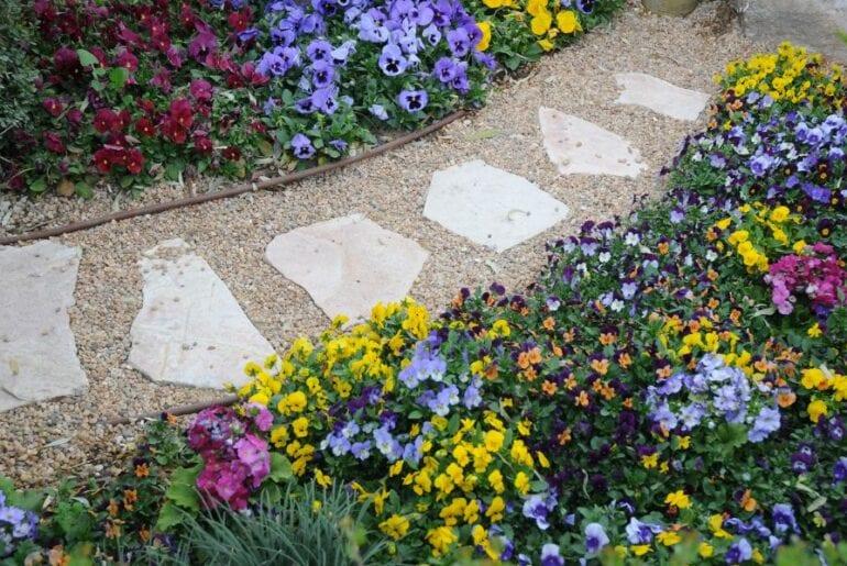 Botanical Garden Walkway With Pea Gravel