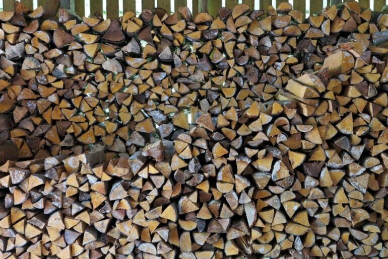 Stacked Moldy Firewood in Shed