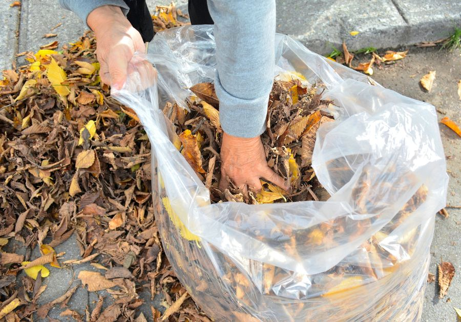 These Are the Best Ways to Bag Your Leaves