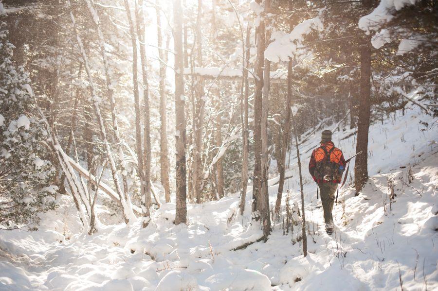 Can You Keep a Deer Freezer Outside?